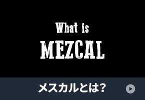 wg_nav_thumb_7_mezcal