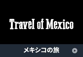 wg_nav_thumb_8_travel
