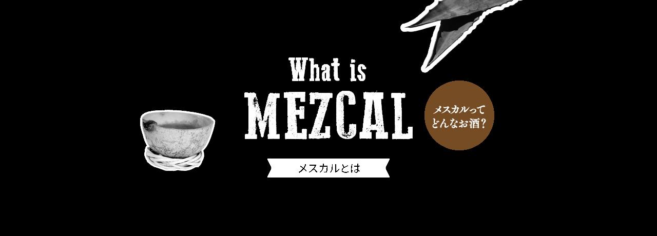 index_topslide_item_8_mezcal.png